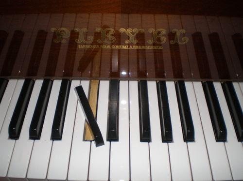 鍵盤が・・・。